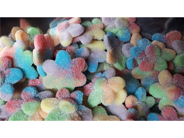 fizzy multi coloured flower petals